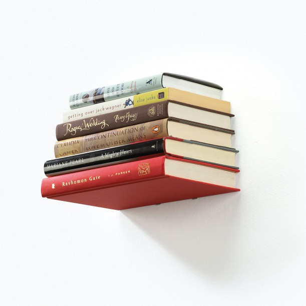 Little Invisible Shelf Conceal Umbra