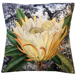 Velvet Cushion Yellow Protea 50 x 50 cm Vanilla Fly