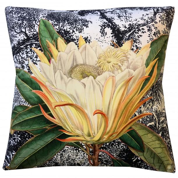 Velvet Cushion Yellow Protea 50 x 50 cm Vanilla Fly
