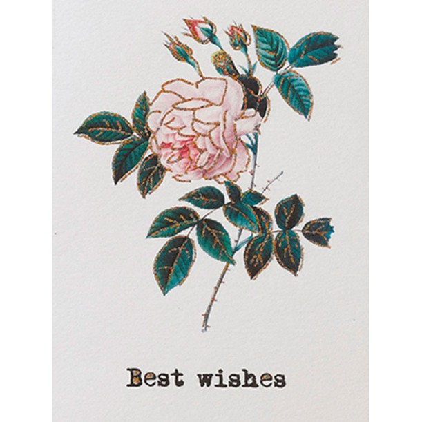 Carte Best Wishes 9 x 13 cm Vanilla Fly