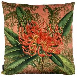 Velvet Cushion Coral Nutans 50 x 50 cm