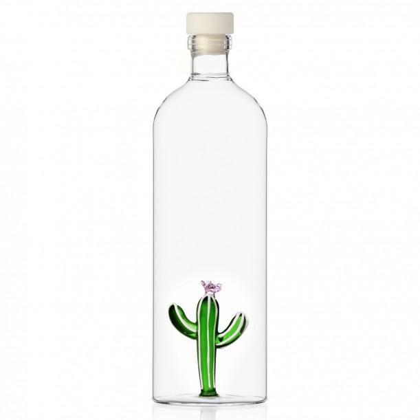 Bottle Cactus