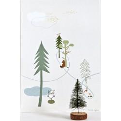 Print Bear
