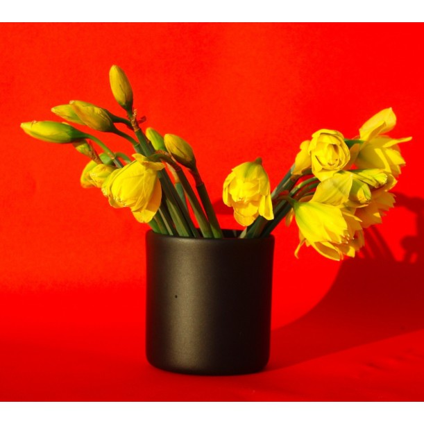 Small Black Vase Pot