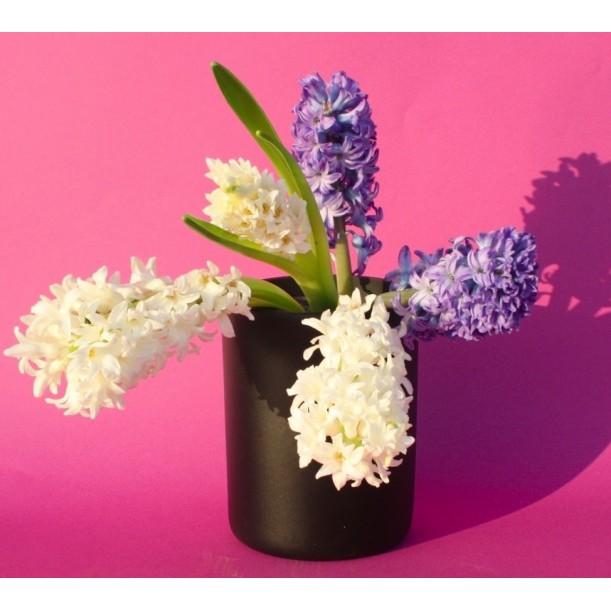 Medium Black Vase Pot