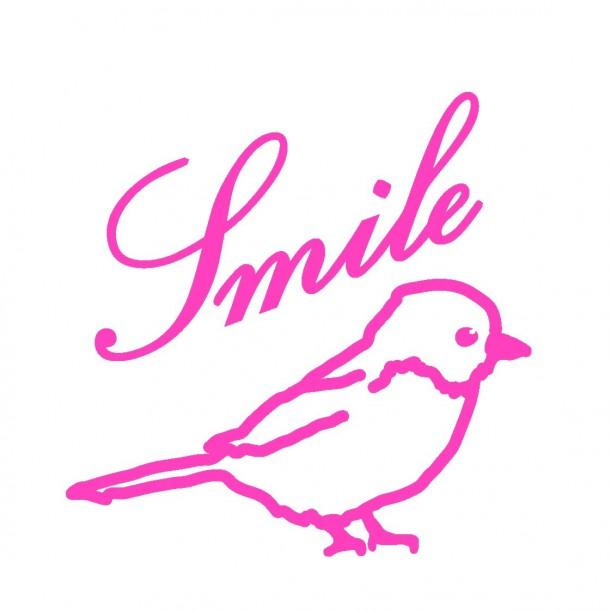 Mini Sticker Rose Fluo Smile Oiseau Mimilou