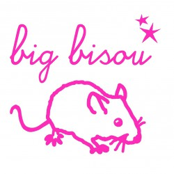 Mini Sticker Rose Fluo Big Bisou Mimilou