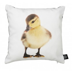 Cushion Baby Penguin by nord
