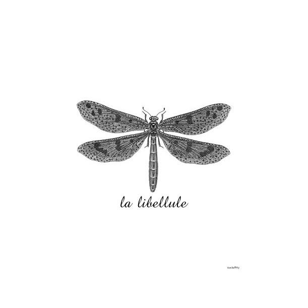 Print Dragonfly