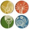 Set of 4 Sealife Plates Thomas Paul