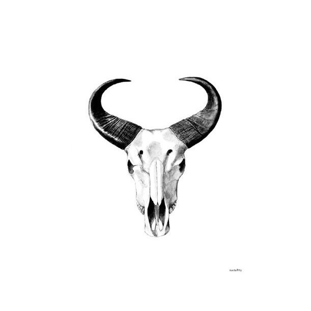 Print African Bull Vanilla Fly
