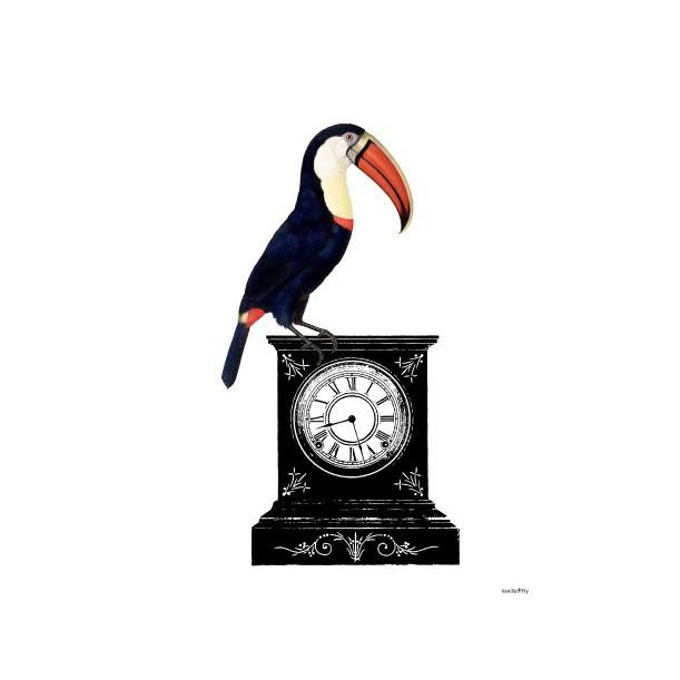 Print Pelican Watch Vanilla Fly