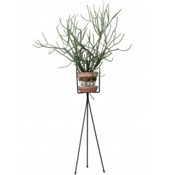 Support de Pot de Fleurs Plant Stand Large Ferm Living