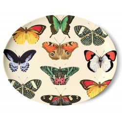 Butterflies Dish Thomas Paul